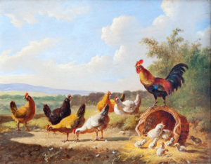 'Cockrels & Hens'