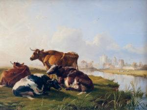 'Canterbury Meadows'