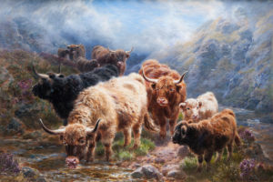'Wandering in the Glen, Glen Treig'