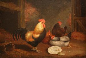 ' Cockrels & Hens'
