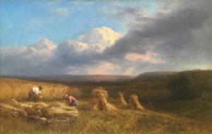 'In the Cornfield'