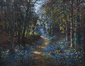 'Bluebell Time'